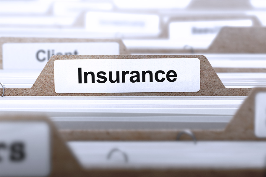 The ability to repay Consumer Loan insurance parameters