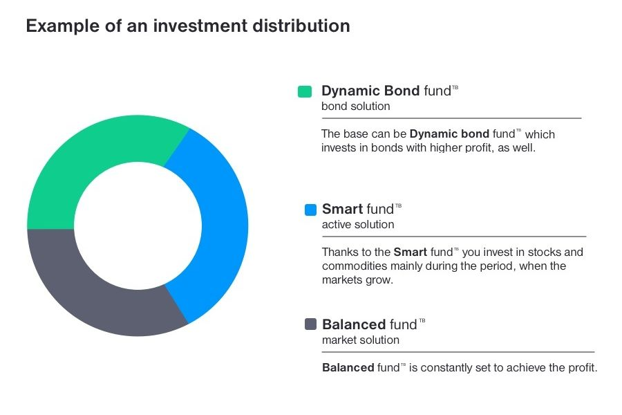 Distribution of investments in mutual funds
